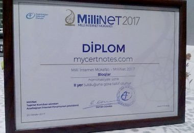 millinet-2017-diplom